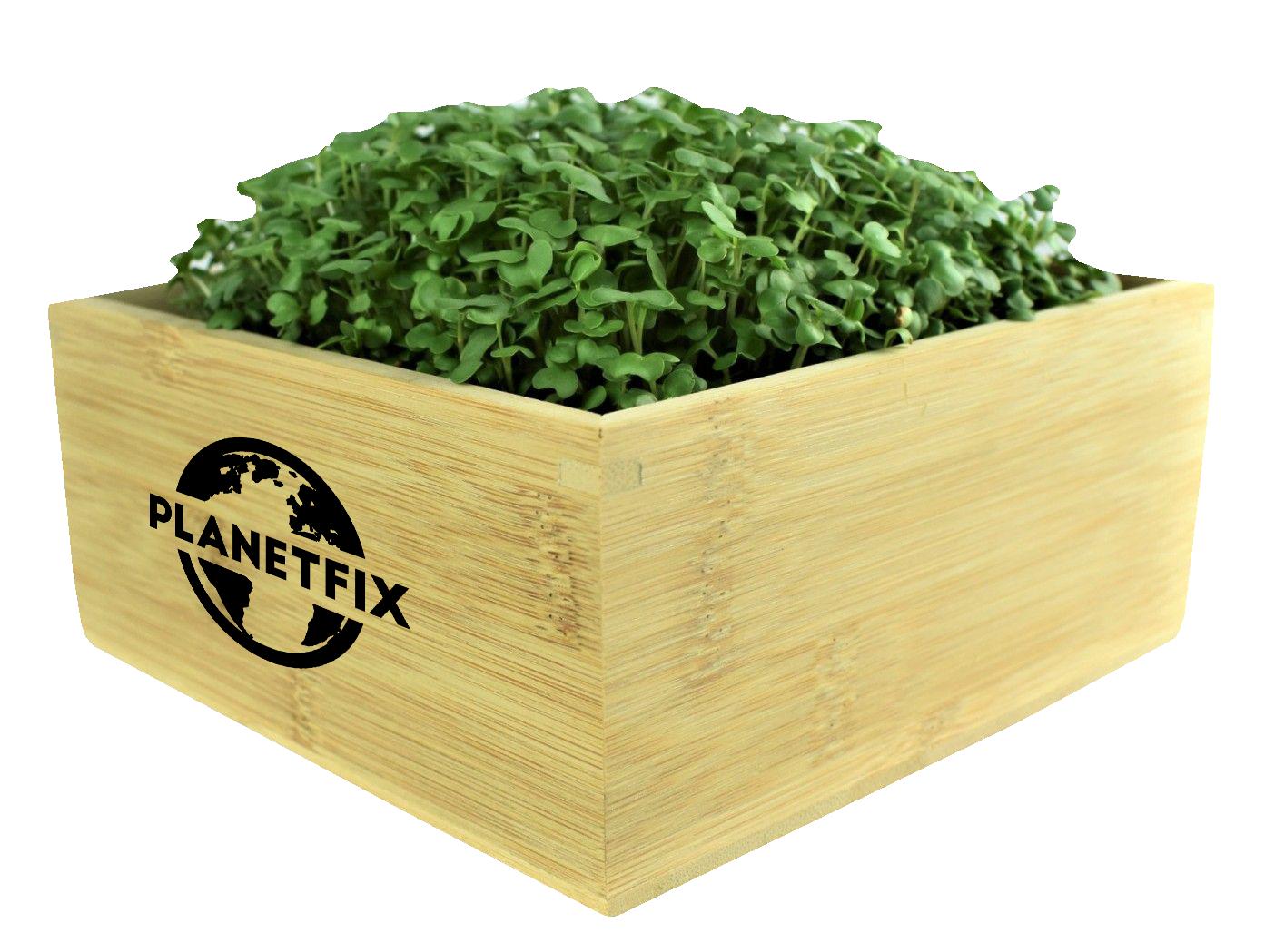 Grow Kit